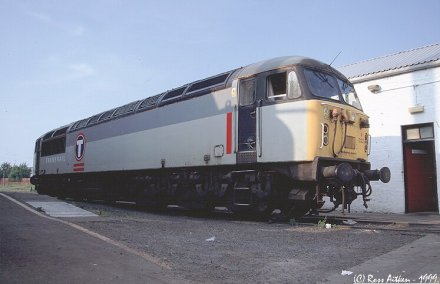 Click HERE to ENTER the Class 56 diesel loco photo gallery